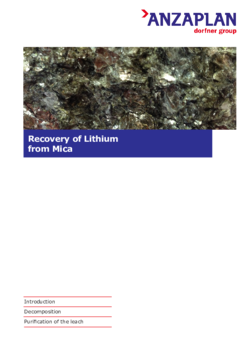Recovery of Lithium from Mica